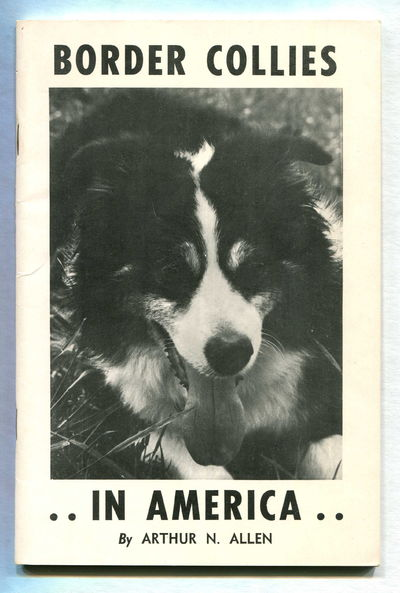 Image for Border Collies in America