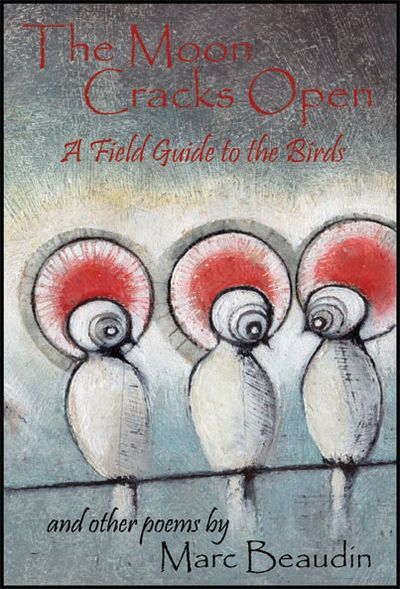 Image for The Moon Cracks Open  A Field Guide to Birds and Other Poems