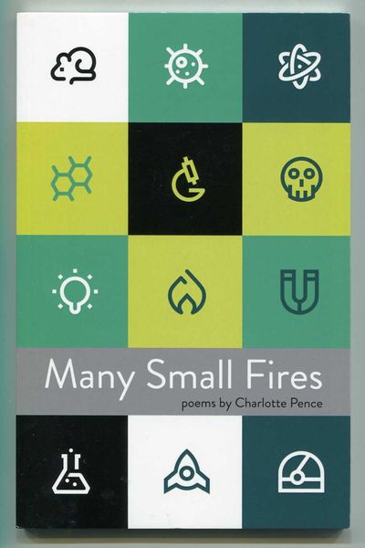 Image for Many Small Fires